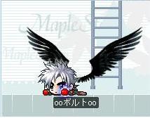 maple0811-1.jpg
