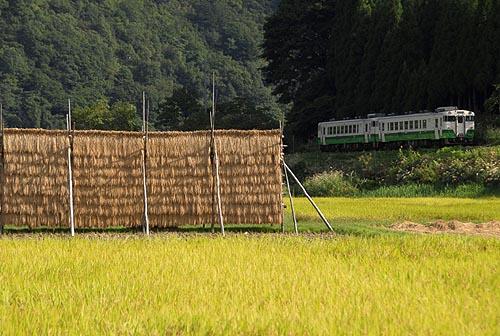 nakagawahaza.jpg