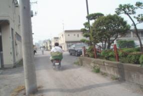 070522sasakihitoshi1.jpg