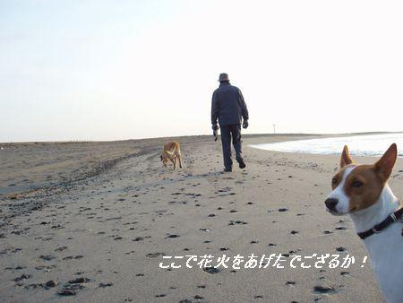 颯爽?と歩いているのはパパさんよん!
