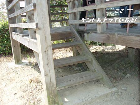 怪談話のある階段ではありません!