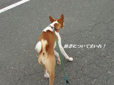 GO! GO! でござる!!