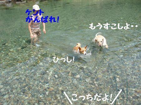 川に行こうと思ったのに・・・