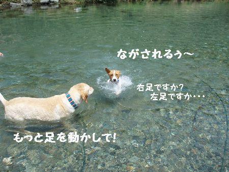 後何回泳ぎにいけるかな?