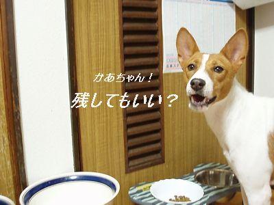 いっぺんに食べて欲しいな!