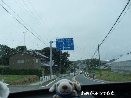 突然の大雨です!!