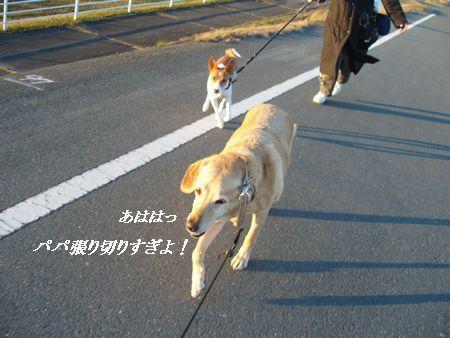 パパさん走ります!!
