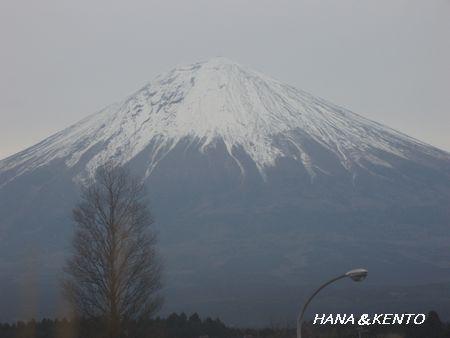 やっと見えた富士山!