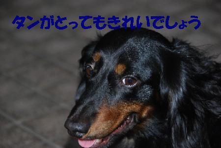 20070809170139.jpg