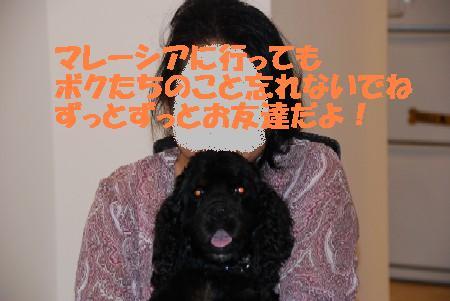 20070817141402.jpg