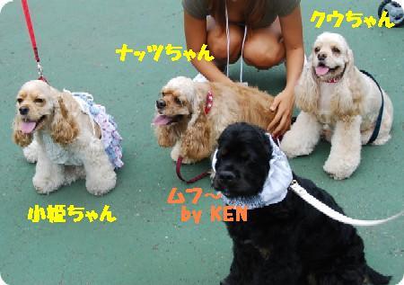 KEN&小姫&ナッツ&クウ