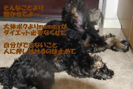 20070913221016.jpg
