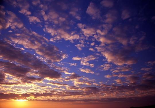 パールロード 朝雲