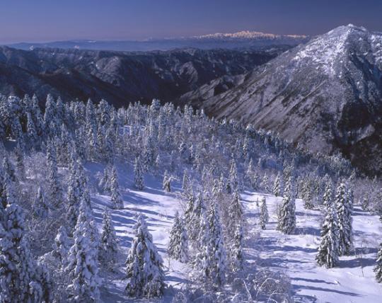 西穂高から白山連峰を望む