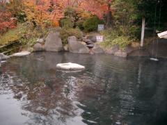 混浴露天風呂の「満天の湯」