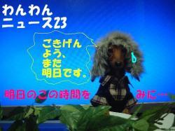 20060213014130.jpg