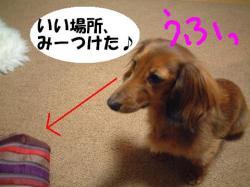 20060216211059.jpg