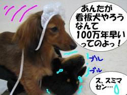20060316230515.jpg