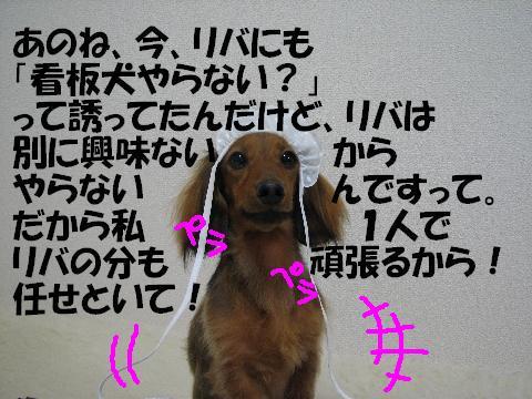 20060316230926.jpg