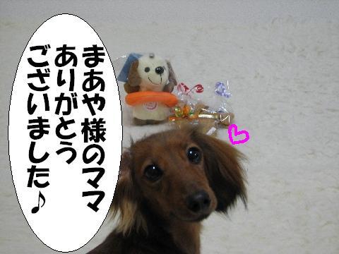 20060328212911.jpg