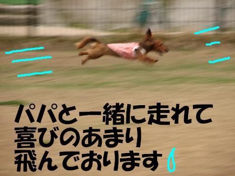 20060502193245.jpg