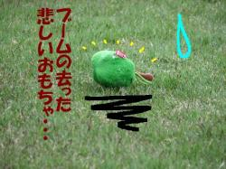 20060512213619.jpg