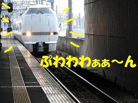20060603230806.jpg