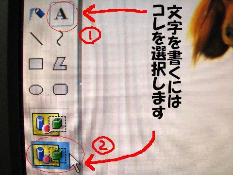 20060611024204.jpg