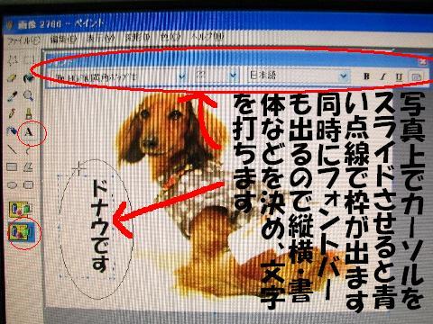 20060611024234.jpg