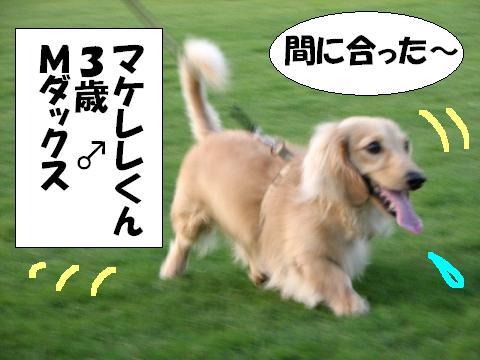 20060619225109.jpg