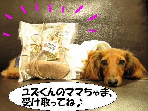 20060621214637.jpg