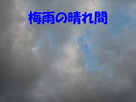 20060624211357.jpg