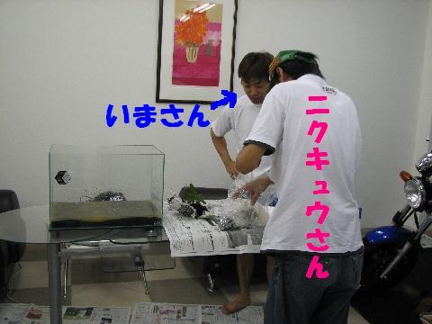 20060714231101.jpg