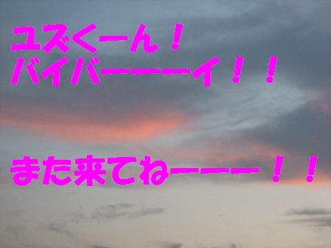20060831231303.jpg