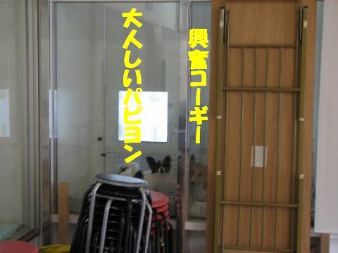 20060901223815.jpg