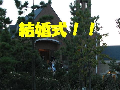 20060910213221.jpg