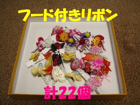 20060915221010.jpg
