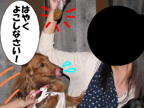 20061003215129.jpg
