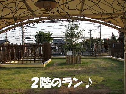 20061020163503.jpg