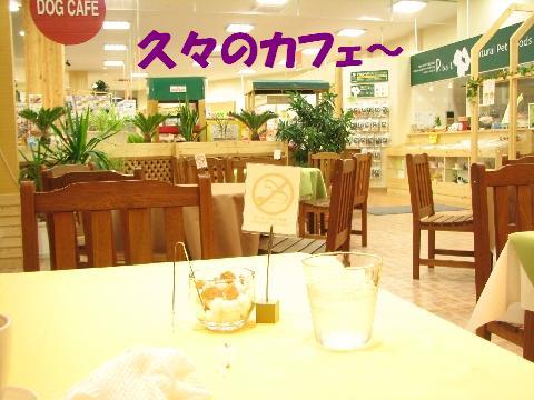 20061026211319.jpg