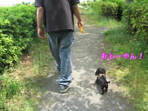 20070514_01.jpg