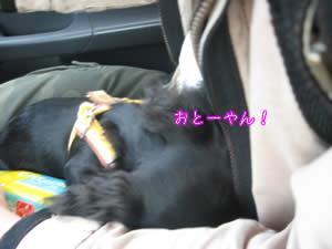 20070514_05.jpg