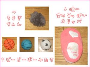 20070612_01.jpg