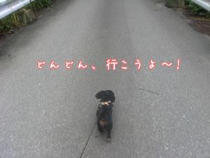 20070618_03.jpg