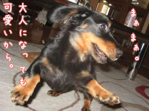 20070619_05.jpg