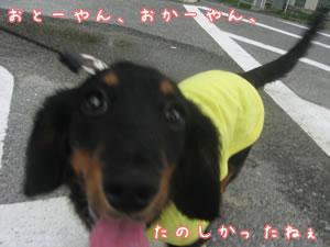 20070625_07.jpg
