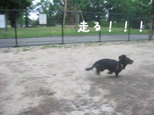 20070709_03.jpg