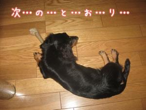 20070713_04.jpg
