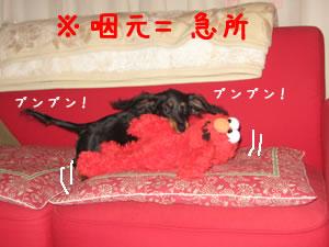 20070724_01.jpg