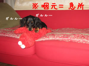 20070724_02.jpg